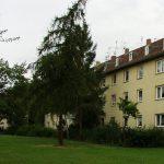 Pfeifferweg5