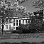 Schönborner Hof_Rückseite